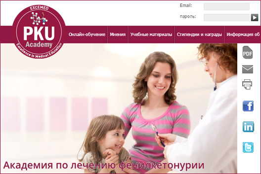 The design of the PKU Academy website